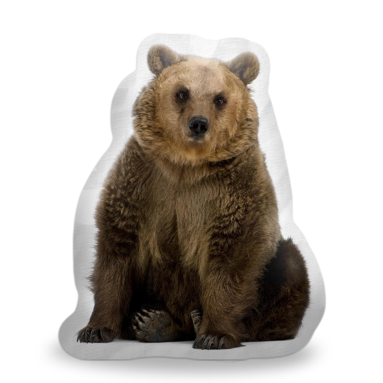 Hnědý medvěd