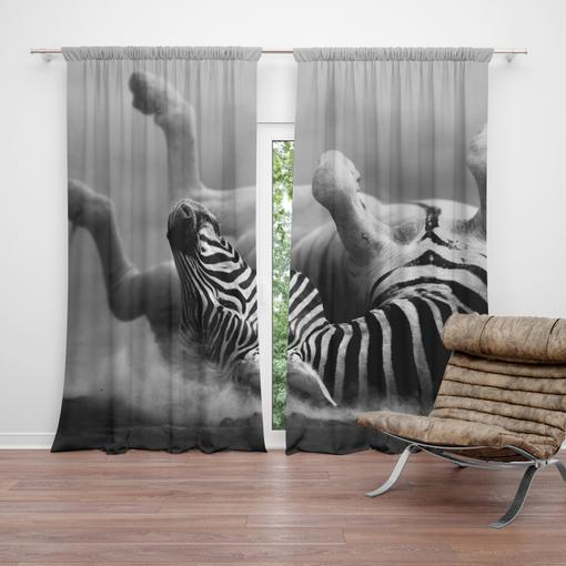 Válející se zebra