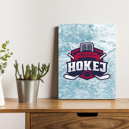 Miluju hokej