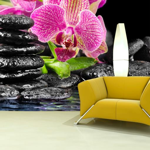 Orchidej na kamenech