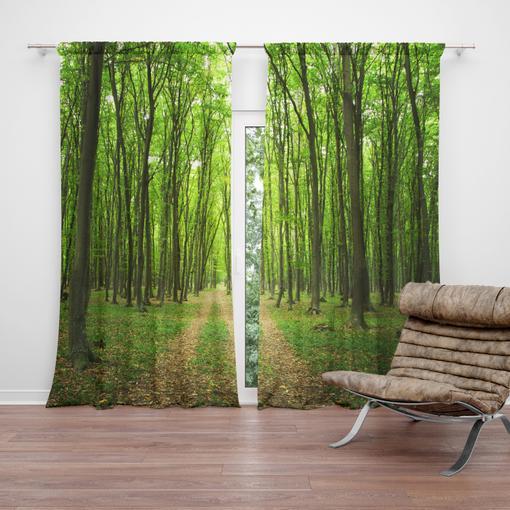 Cesta v lese