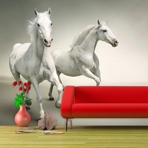 Dva bílí koně
