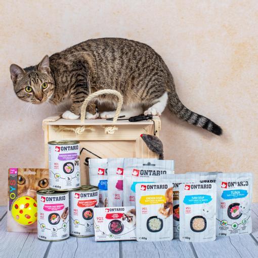 Dárková bedna pro kočičku