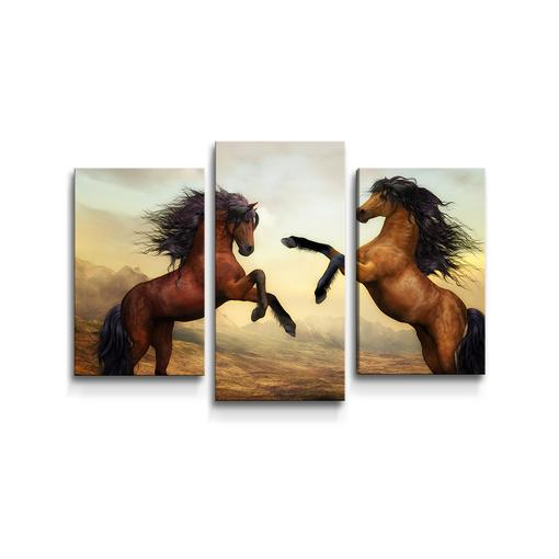 Vzpínající se koně