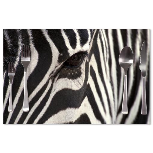 Detail zebra