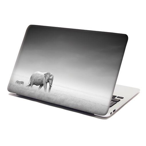 Slon a zebra