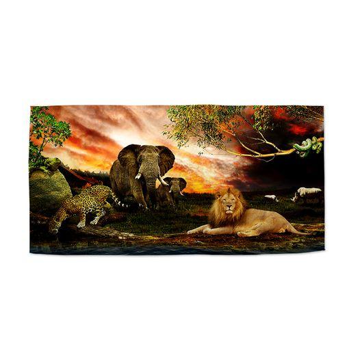 Zvířata ze Sahary