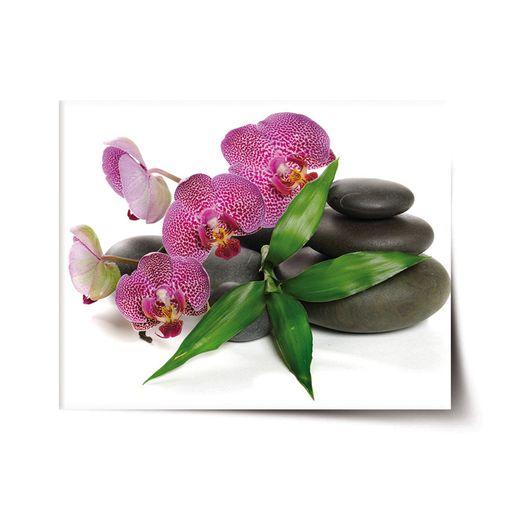 Orchideje a kameny