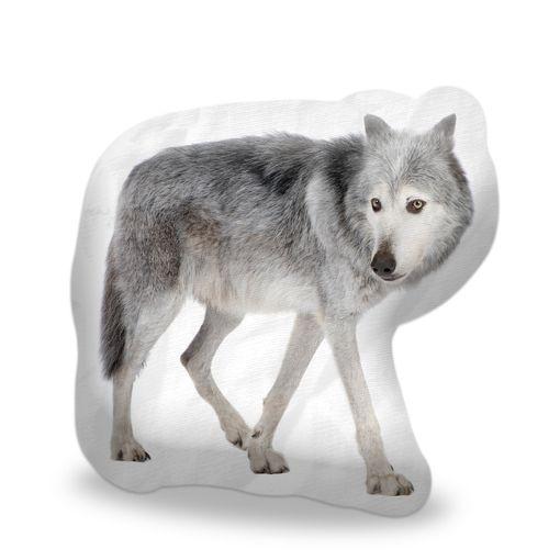 Vlk lesní